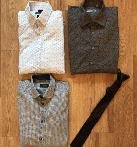 Рубашки Zara s размер
