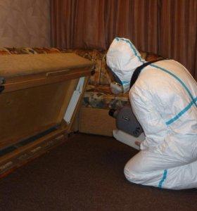 Уничтожение клопов в Новосибирске