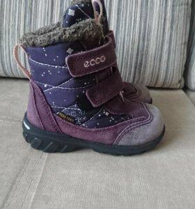 Ботинки Ecco 22р