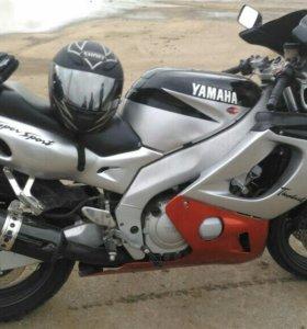 Yamaha thundercat r6