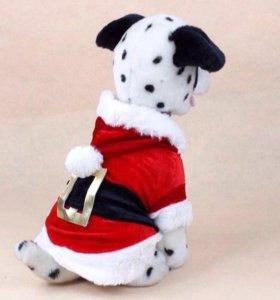 Новогодний наряд для маленькой собачки