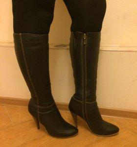 Кожаные сапоги Basconi евромех 38 размер
