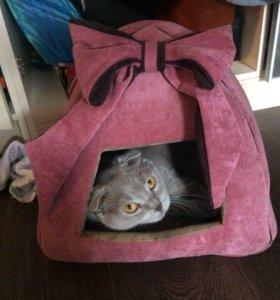 Дом для кошки .