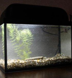 Настольный аквариум-ночник