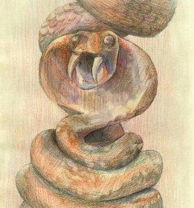 """Картина, рисунок """"Змея"""" (карандаши)."""
