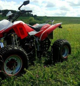 Ирбис 250