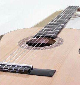 гитара Hohnor