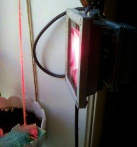 Фитопрожектор, фитолампа светодиодная 10 ватт
