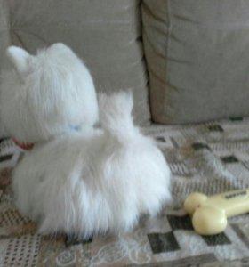 Интерактивный щенок BAXTER