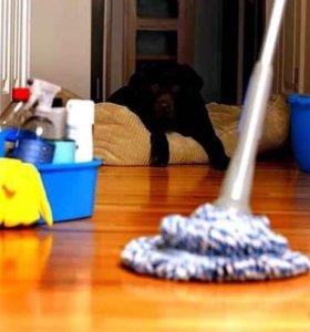 глажка , сухая уборка ( пыль) и полы