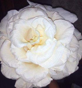Объемные розы из гофрированной бумаги ко дню МАМЫ