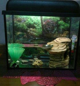 Аквариум с наполнением для черепашки ( рыбок)