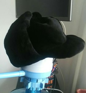 Мужская норковая шапка стриженная