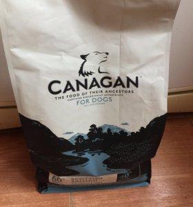 Canagan корм для собак с лососем