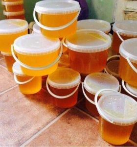 Мёд из подсолнечника с собственной пасеки