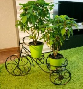 Подставка для елки, подставка для цветов
