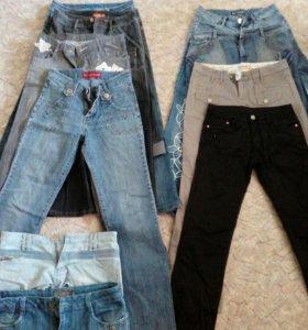 Женские брюки, шорты и юбки разных размеров