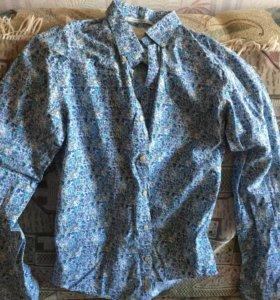 Новая рубашка Scotch & Soda