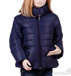 новые куртки на холодную осень