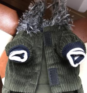Куртка для йорка или чихуа мальчика!!!
