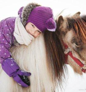 Лошади, прогулки, обучение, катание верхом.