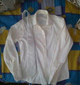 Рубашка с галстуком (комплект)
