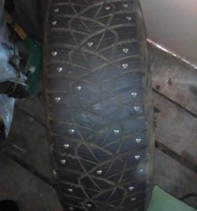 DUNLOP ICE TAUCH