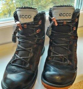 Ботинки ecco biom hike kids 703302/51052