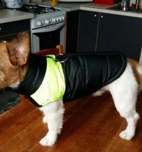 Курточка для собаки