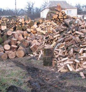 дрова колотые из твердых пород