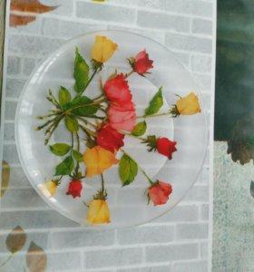 Тарелка стекло