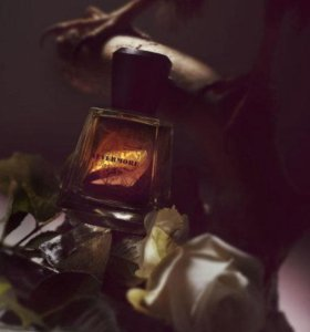 Frapin Nevermore edp 100 ml