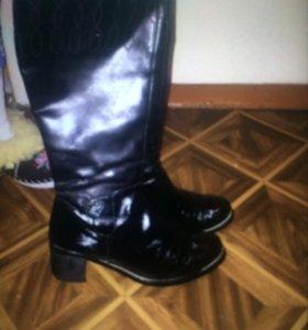 кожаные сапоги Svetski