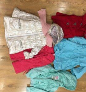 Куртки и пальто для девочки