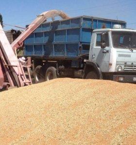 Камаз 5320 зерновоз сельхозник