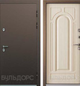 Дверь термо -2