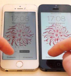 Замена дисплея IPhone 5/5C/5S