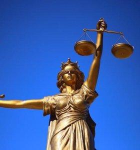 Юридическая консультация и поддержка