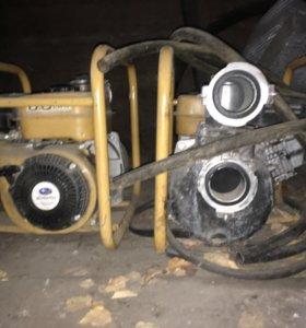 Мото помпа кайман ТР65