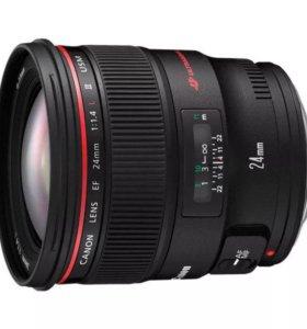 Canon 24 mm f1.4 L 2