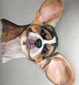 Портрет собаки
