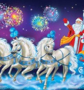 Дед Мороз и снегурочка,аниматоры,ведущии