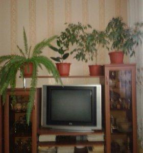 Горка-тумба под телевизор