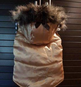 Шикарная куртка для средней собачки.