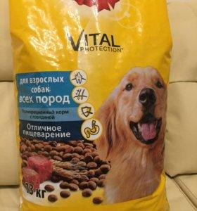 Сухой корм для взрослых собак