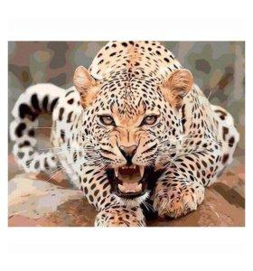 Раскраска по номерам- Леопард