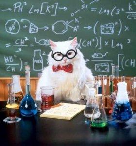 Репетитор по математике и физике