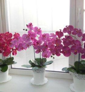 Орхидеи имитация.Топиарии.Цветочные композиции.