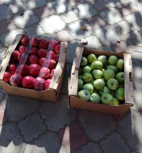 Яблоки,лук,сахар,картофель галанка
