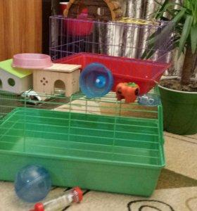 Клетки и домики для грызунов.